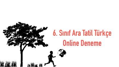 6. Sınıf Ara Tatil Türkçe Online Deneme