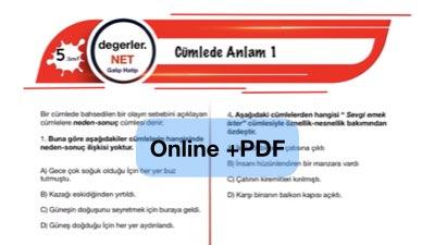 5. Sınıf Cümlede Anlam Online Test Pdf