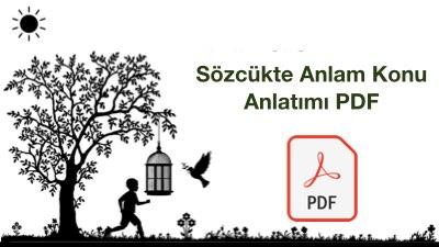 Sözcükte Anlam Konu Anlatımı PDF