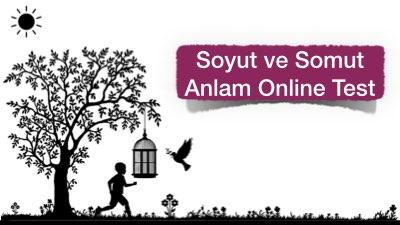Soyut ve Somut Anlam Online Test
