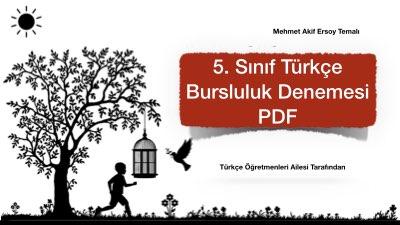 5. Sınıf Türkçe Bursluluk Denemesi PDF İndir