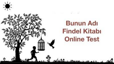 Bunun Adı Findel Kitabı Online Test