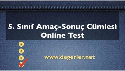 5. Sınıf Amaç-Sonuç Cümlesi Online Test
