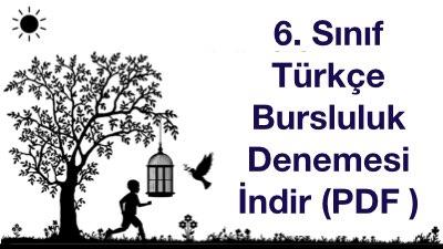 6. Sınıf Türkçe Bursluluk Denemesi İndir (PDF )
